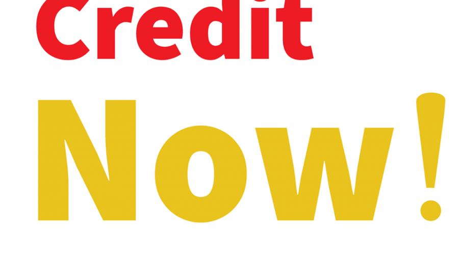 Logo Credit Now