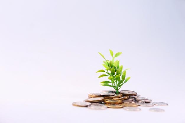 các quỹ mở ở Việt Nam hiện nay