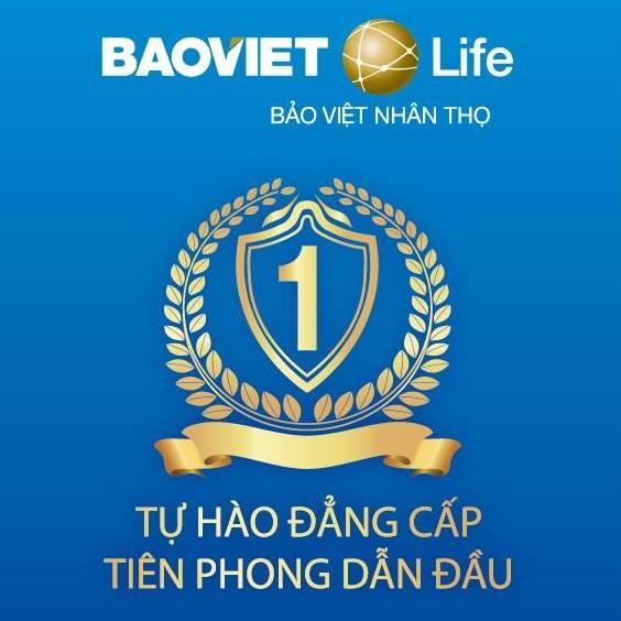 Bảo Việt Nhân thọ có phải của Nhà nước không