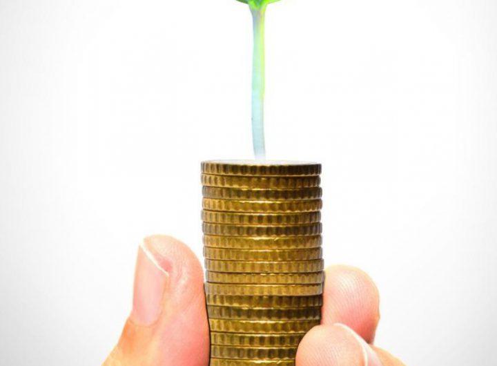 Lãi suất công bố của các công ty bảo hiểm